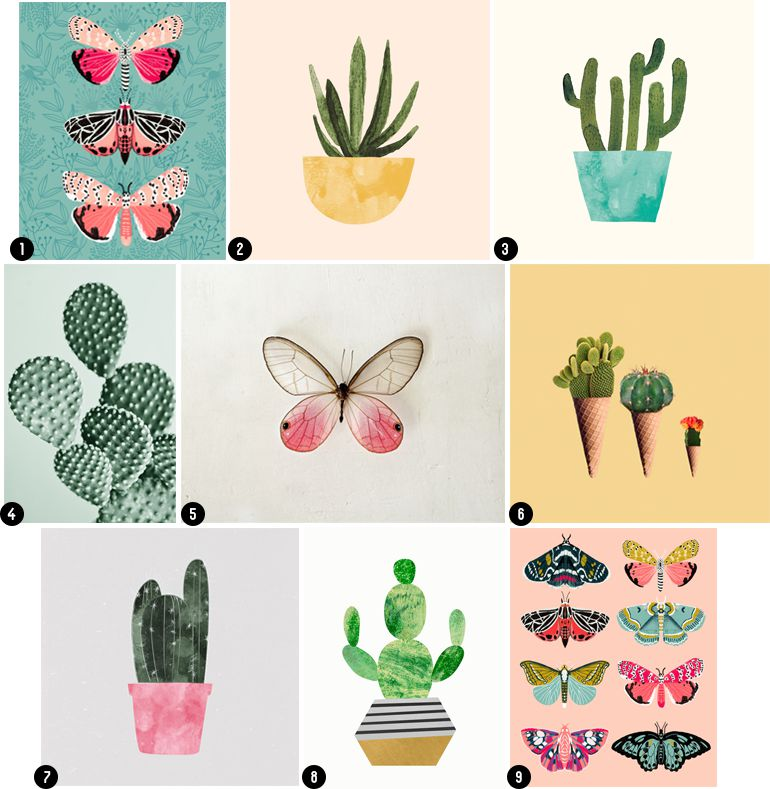 Succulents art prints and butterfly art prints
