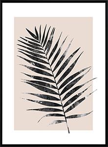 Palm leave print