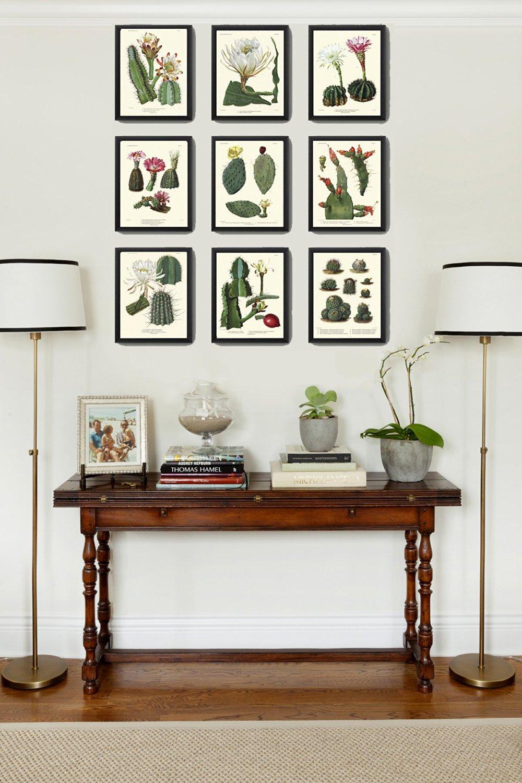 Botanical vintage illustrations