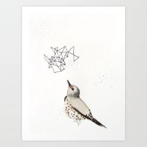 northern-flicker-prints