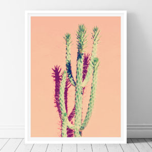 Cactus - Printable Wall Art