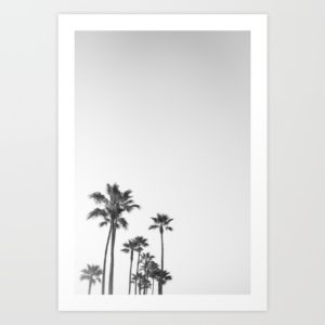 black-and-white-california-palms-prints