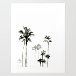 shadow-palms-2zr-prints